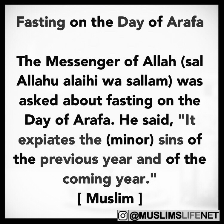 Daily Hadith: Fasting on the Day of Arafa